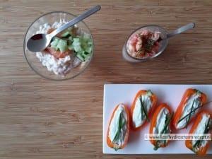 borrelhapjes - zalm-rivierkreeft - gevulde paprika - koolhydraatarm-recept-04