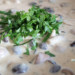 champignon roomsaus
